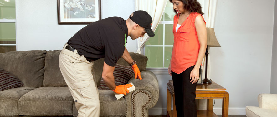 Arlington, VA carpet upholstery cleaning